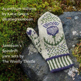 Acathium mitten sitting on a stone. Mitten features colorwork in green and purple.  Image text: Acanthium mittens by Katie Green, Jamieson's spindrift yarn sets by The Woolly Thistle.