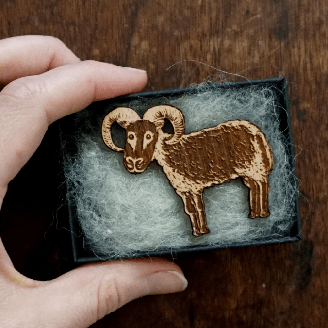 Laser engraved and cut brooch of one of Katie Green's original Soay illustrations, made in the UK from solid Beech wood.
