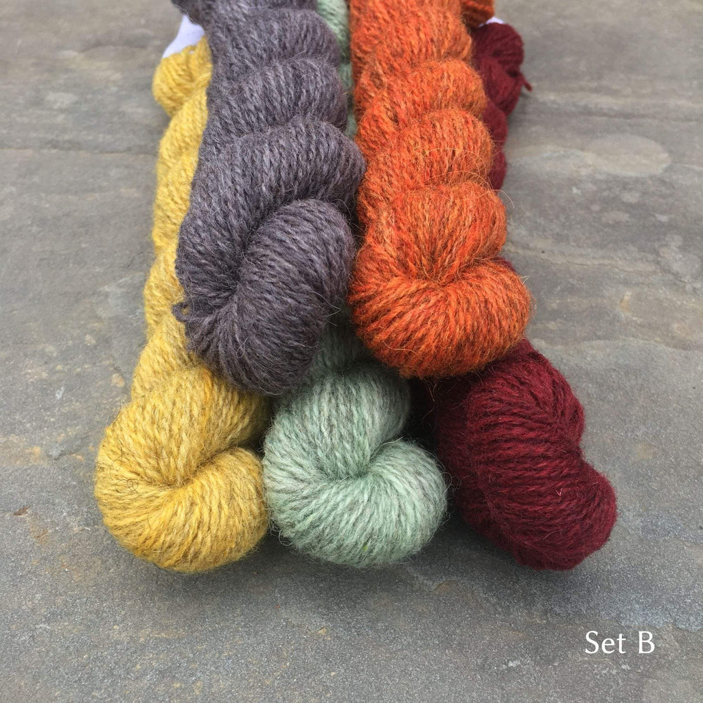 The Grey Sheep Hampshire 4ply Mini Skeins Set