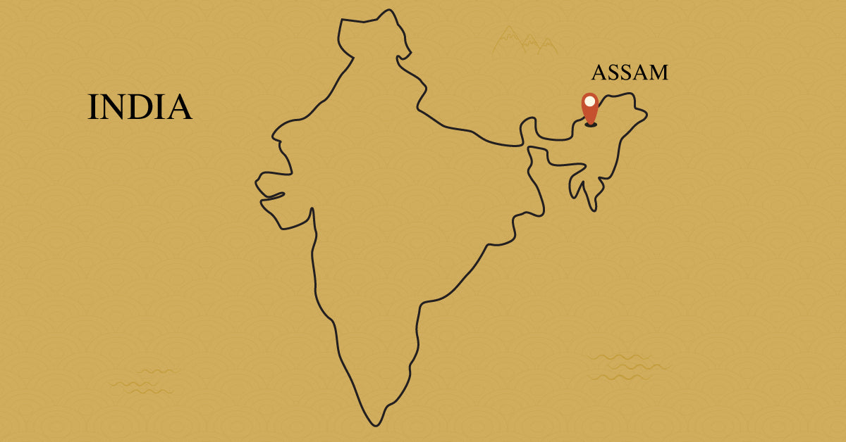 assam-india-tea-region