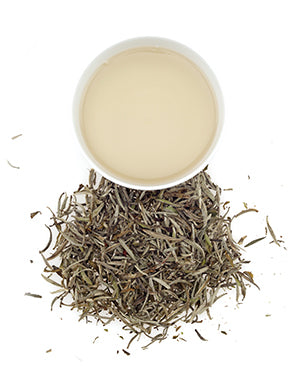 a cup of brewed chinese white silver needle tea