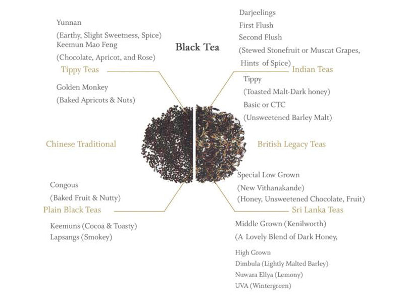 Black Tea Origins