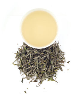 a cup of brewed king of bai mudan white tea