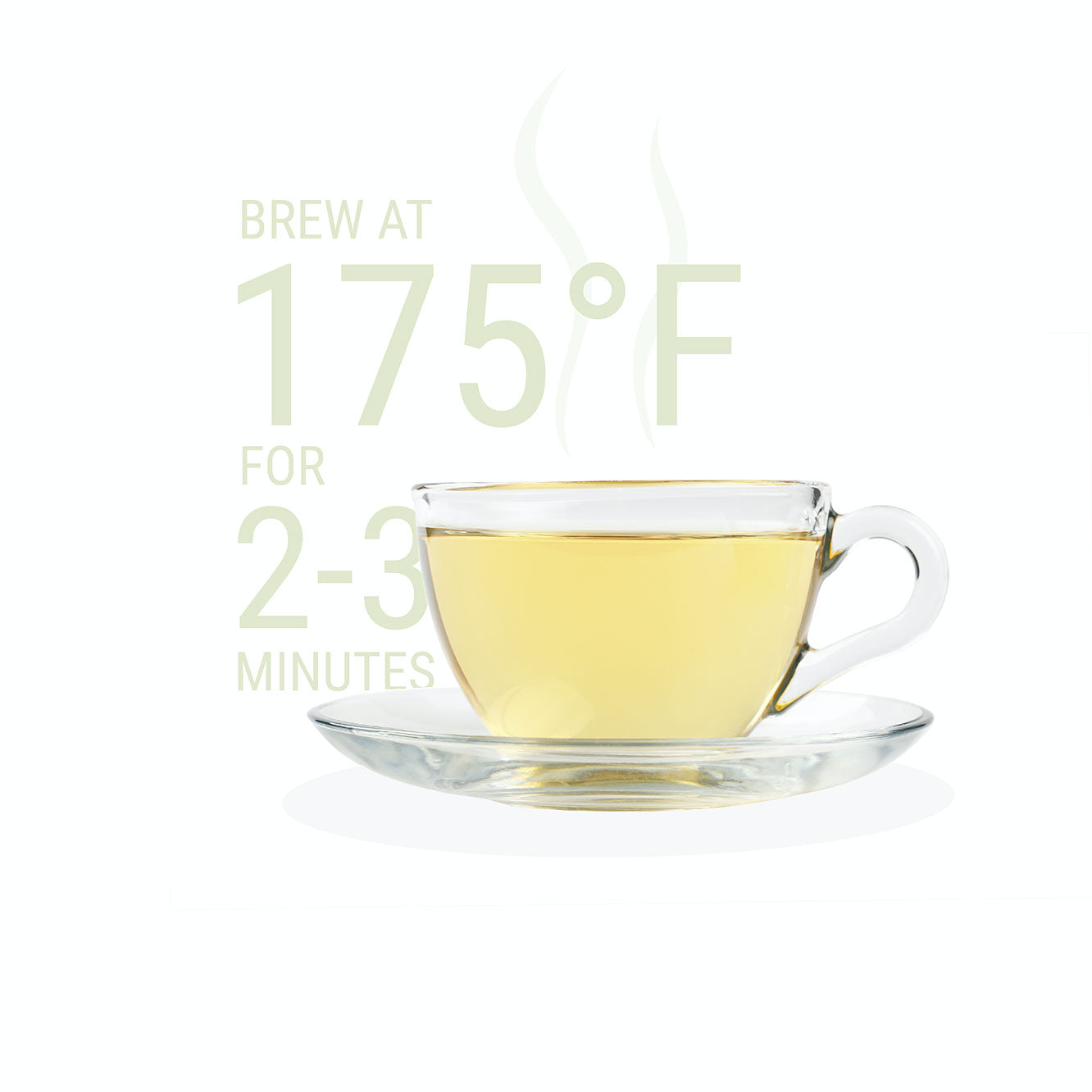 a clear cup with brewed white tea and brewing instructions of 175 degrees for two to three minutes