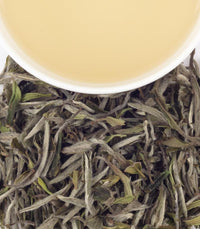 King of Bai Mudan -   - Harney & Sons Fine Teas