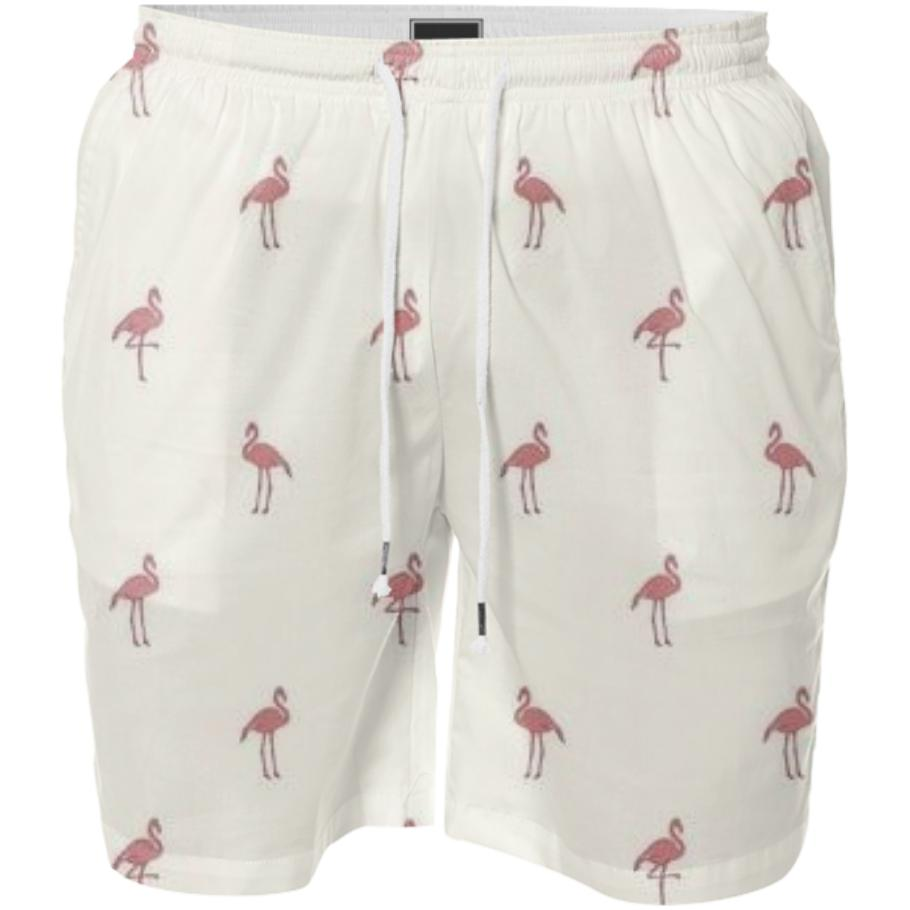 The FLAMINGO Trunks