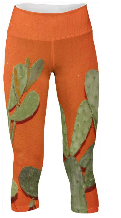 To Cacti For Pant