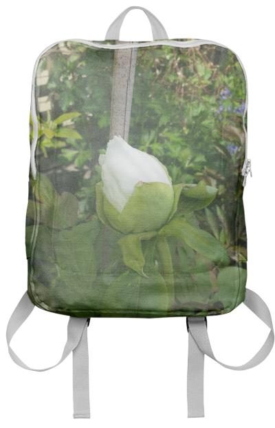 cloud rose backpack