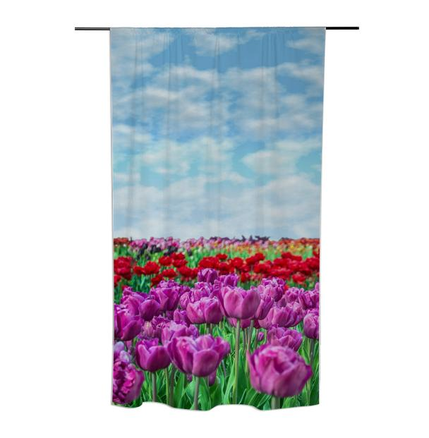 Tulip Field Curtain