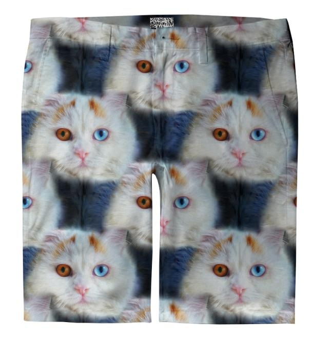 Odd Eyed White Persian Cat Trouser Shorts