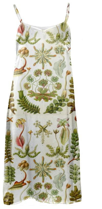 Botanical Slip Dress