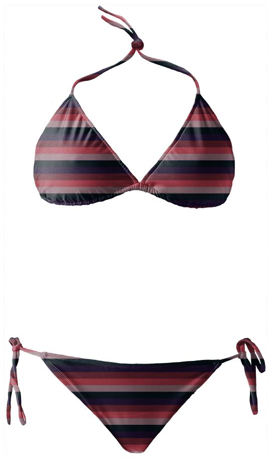 Muted Purple Striped Bikini