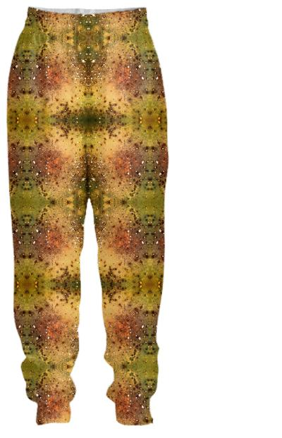 PSYCHEDELIC ABSTRACT ART on Tracksuit Pant Vision of an Alien World with Cracks and Craters