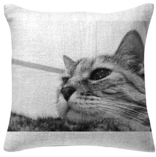 B W Kitty Upclose Pillow