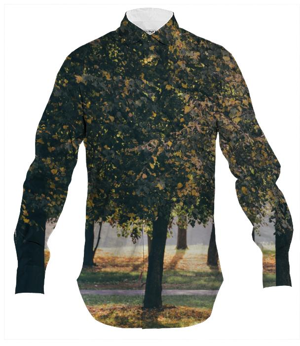 Autumn Trees Men s Button Down