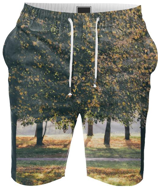 Autumn Trees Summer Short