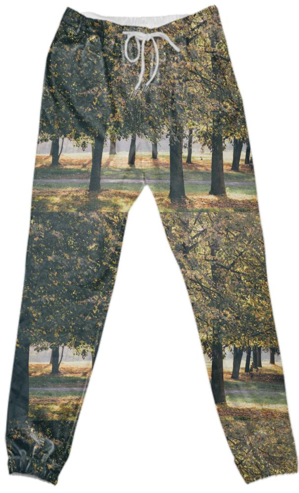 Autumn Trees Cotton Pants