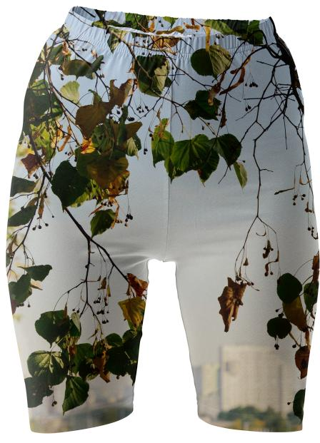 Autumn in the city Bike Shorts