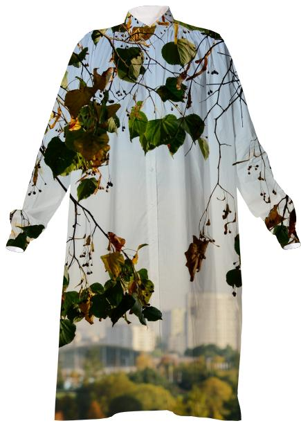 Autumn in the city VP Shirtdress