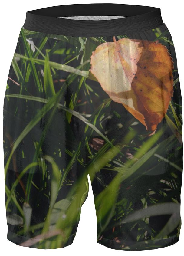 Fall Leaf Boxer Shorts