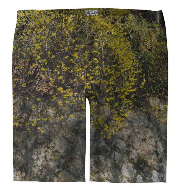 Forsythia Wall Trouser Shorts