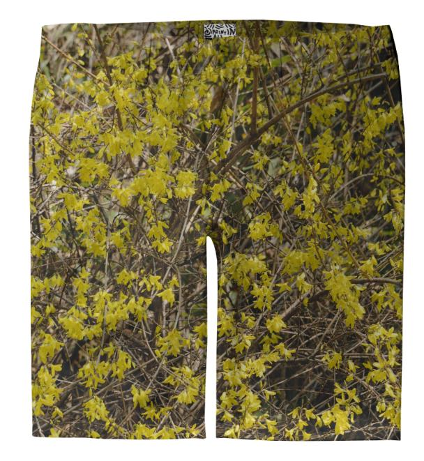 Forsythia Trouser Shorts
