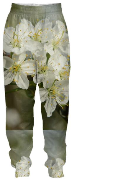 Spring Flowers Tracksuit Pant