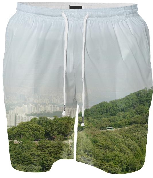Seoul View Swim Short