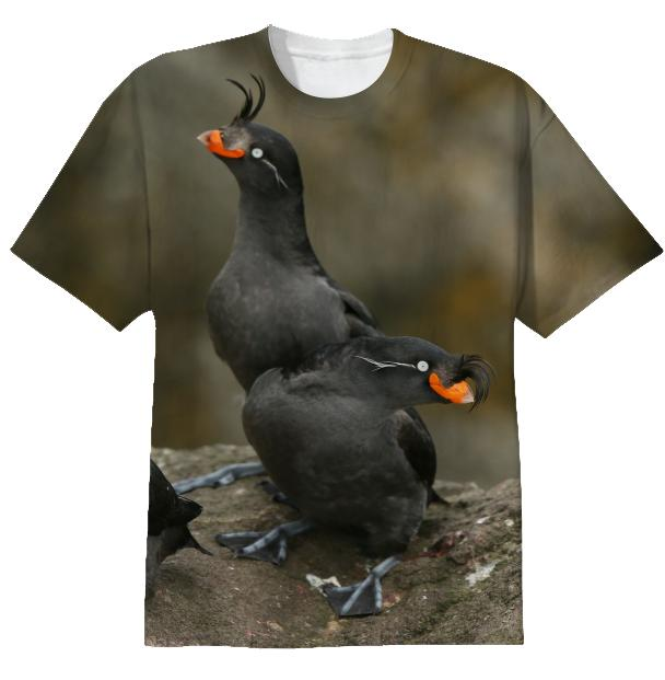Crested Auklet tee