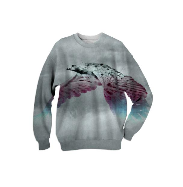 Flying Eagle Evolving Energy Sweatshirt