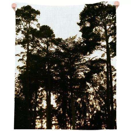 Trees at Dusk Beach Towel