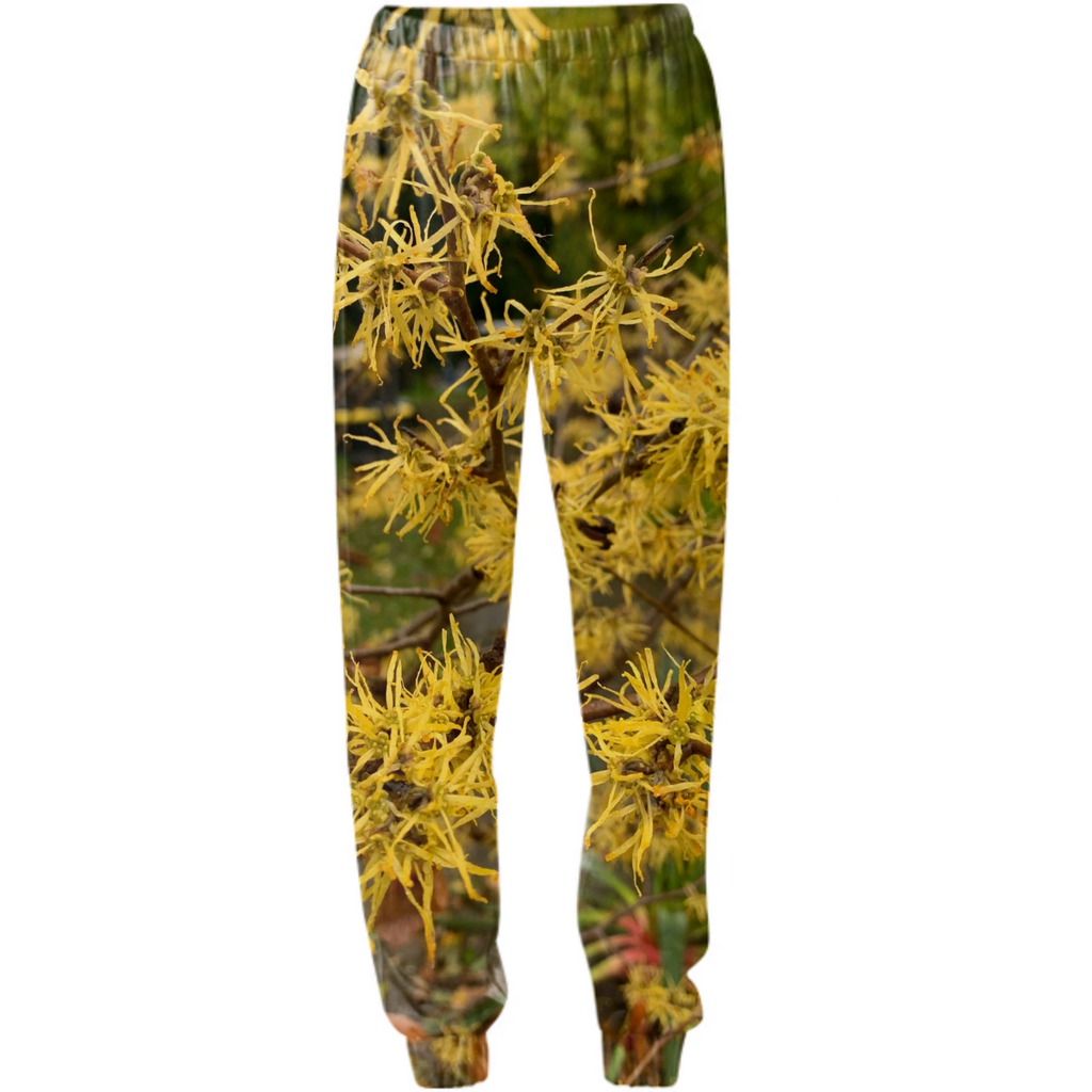 witch hazel pants