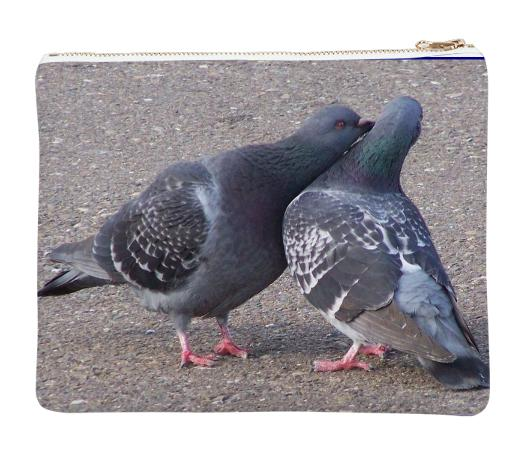 PIGEONS IN LOVE