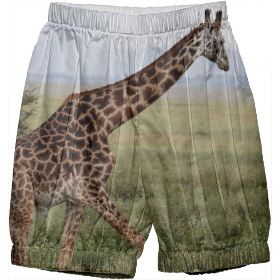 Safari Adventure Giraffe Pants