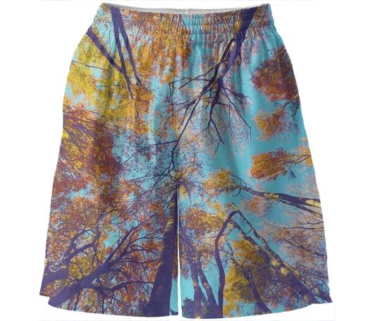 Blue Autumn Basketball Shorts