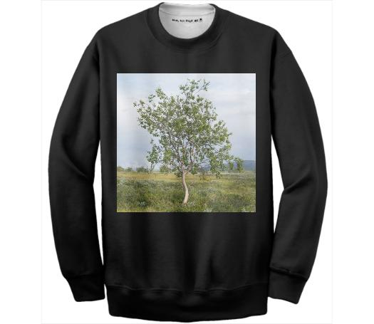 Betula pubescens Cotton Sweatshirt Black