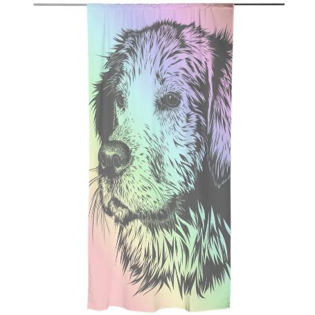 Rainbow Dog Curtain