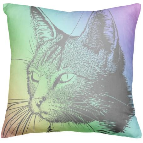 Rainbow Cat Pillow