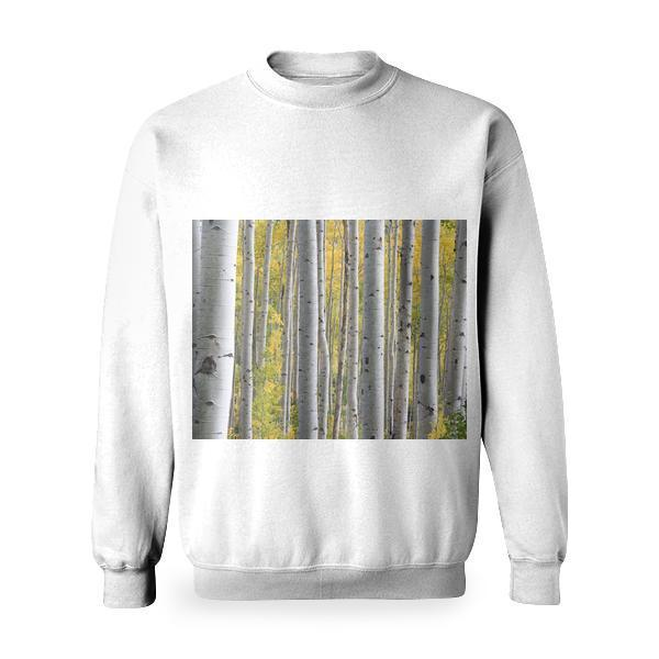 White Trees With Green Leafs During Daytime Basic Sweatshirt