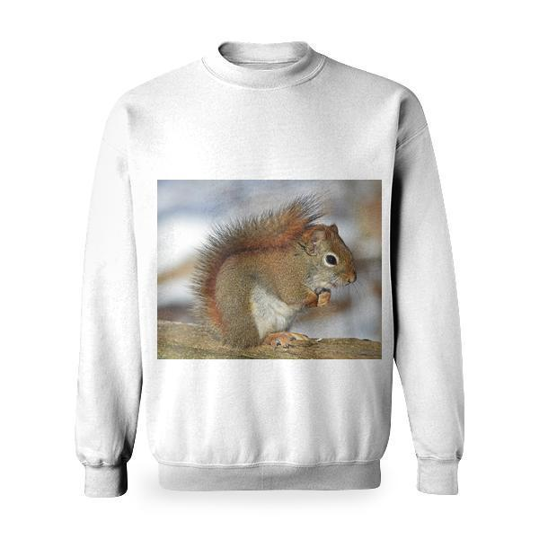Small Squirrel Standing On Brown Wood Basic Sweatshirt