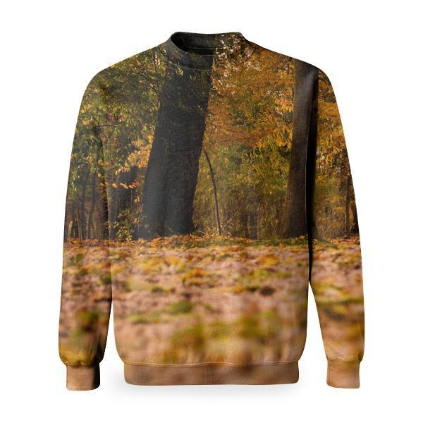 View Of Trees In Forest During Autumn Basic Sweatshirt