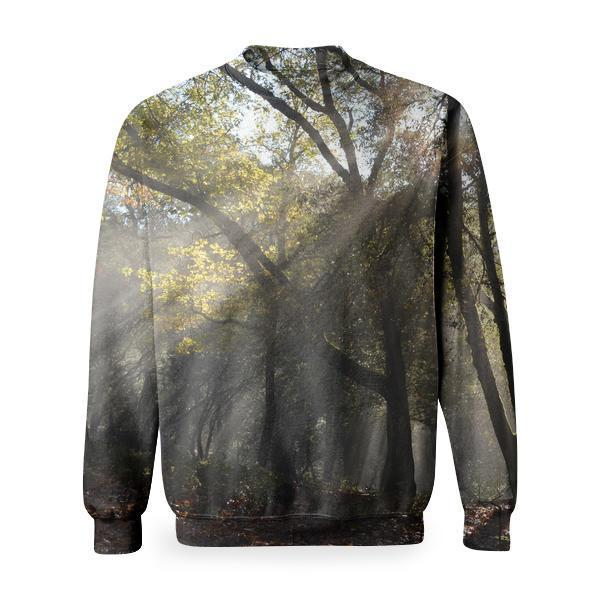 Trunks And Branches Of Trees During Day Time Basic Sweatshirt