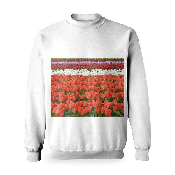 Red White And Pink Flower Fields During Daytime Basic Sweatshirt