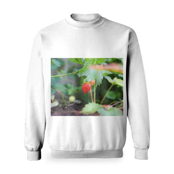 Food Red Summer Garden Basic Sweatshirt
