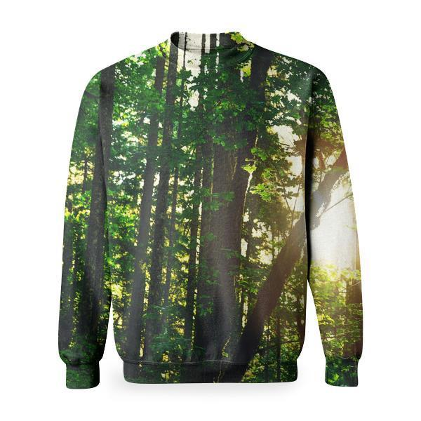 Silhouette Of Tree Trunks With Reflection Sun During Daytime Basic Sweatshirt