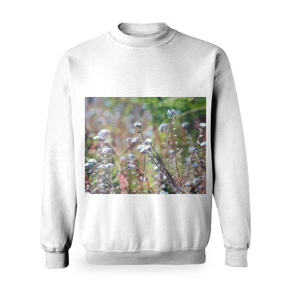 White And Blue Petal Flowers In A Garden During Day Time Basic Sweatshirt