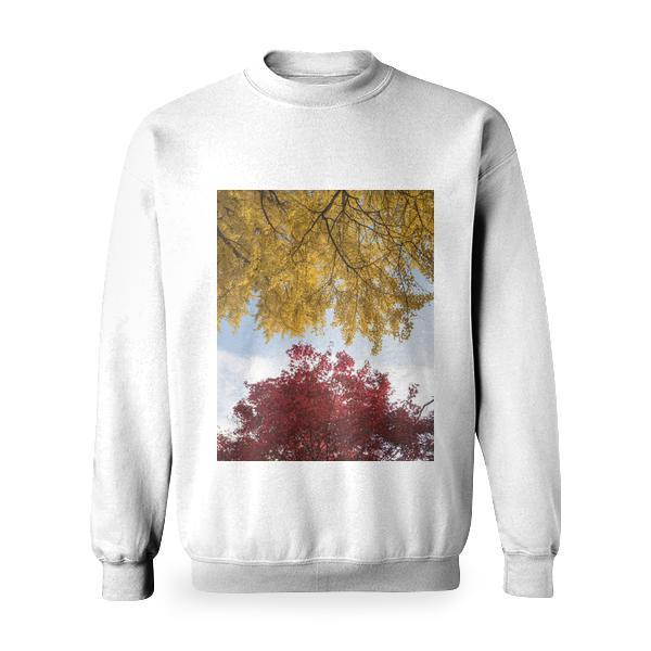 Yellow And Red Leaf Tree Under White Blue Sunny Sky Basic Sweatshirt