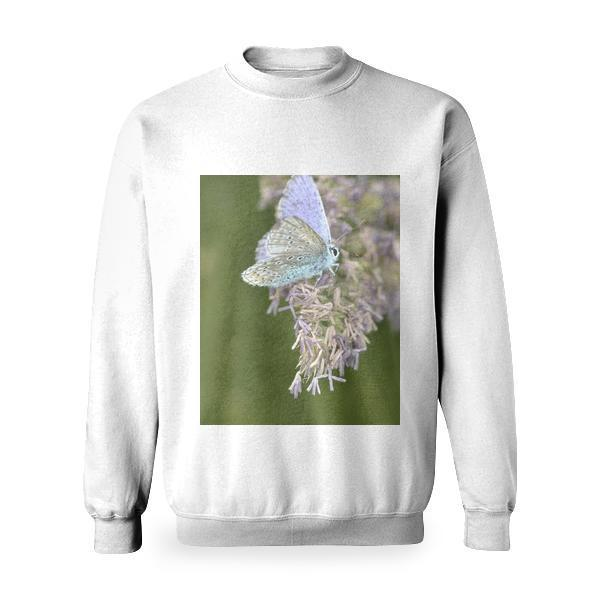 Purple White Butterfly On Purple Petaled Flower During Daytime Basic Sweatshirt