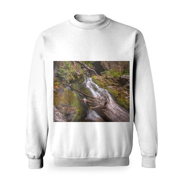 Forest With Flowing River Surrounded Grasses Basic Sweatshirt