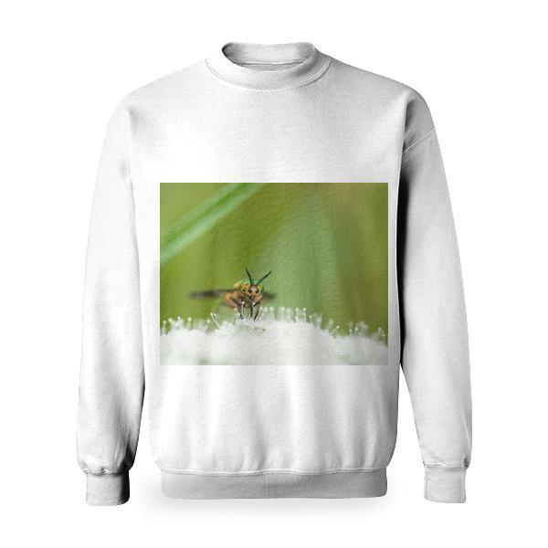 Yellow Green And Black Bee On White Flower During Day Time Basic Sweatshirt